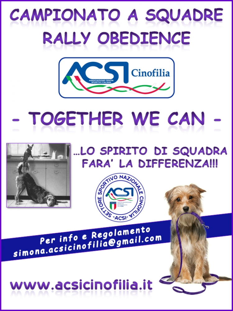 """Together We Can"" Campionato a Squadre ACSI"