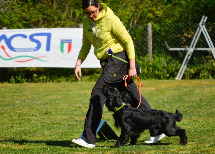 Campionato Rally Obedience ACSI 2015/2016